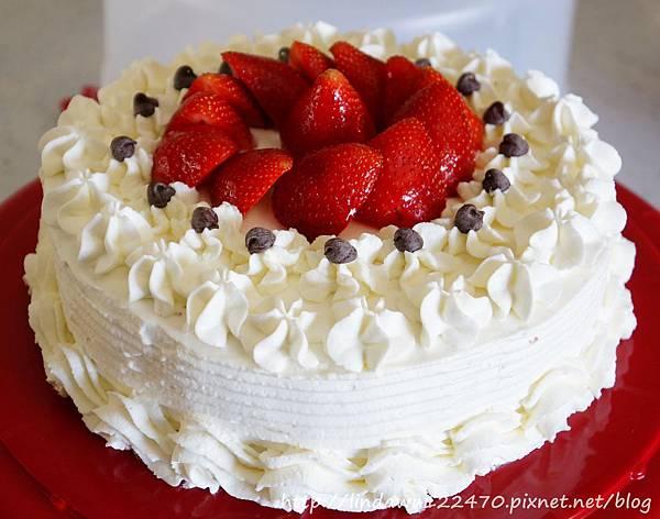 巧克力鮮奶油生日蛋糕成品 1