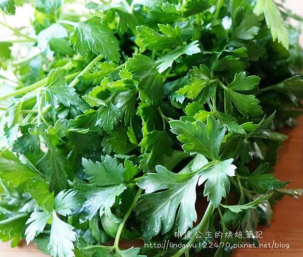 肉醬義大利麵--parsley巴西利葉