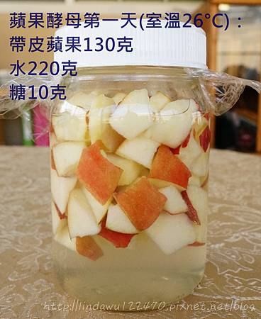 蘋果酵母第一天