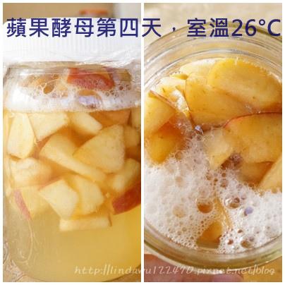 蘋果酵母第四天
