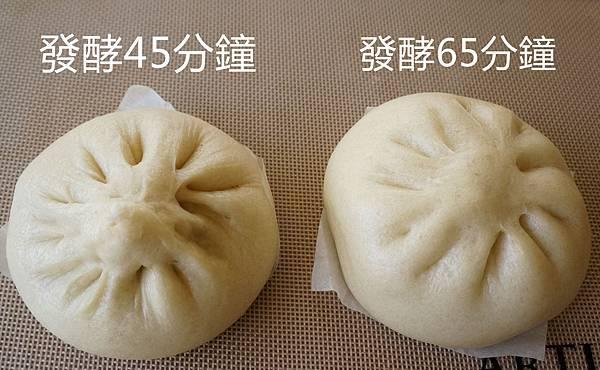 竹筍肉包-發酵時間不同成品比較