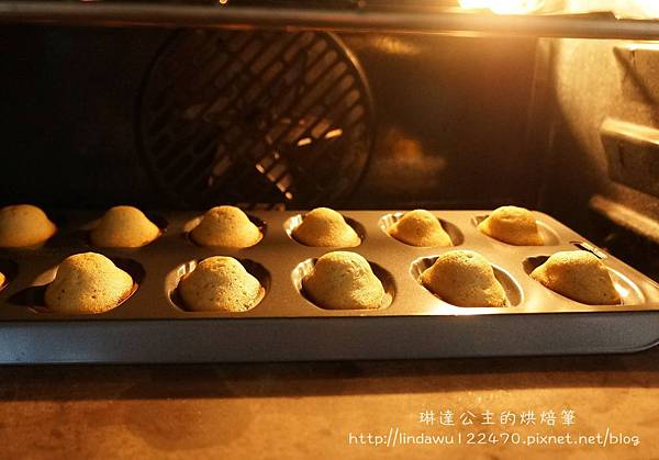 瑪德蓮-烘烤過程
