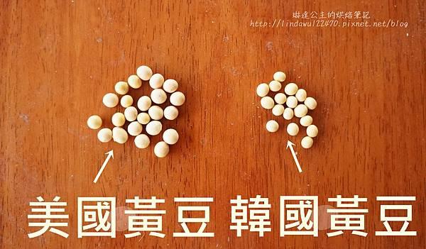 自製豆腐(熟石膏)--黃豆大小比較