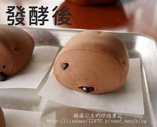巧克力豆饅頭-發酵後