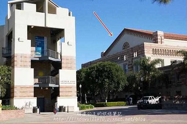 參觀UCLA 40