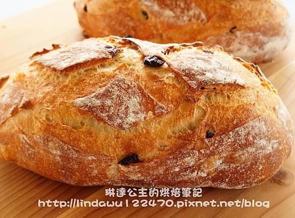 鄉村蔓越莓麵包15