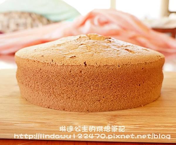 巧克力棉花蛋糕16