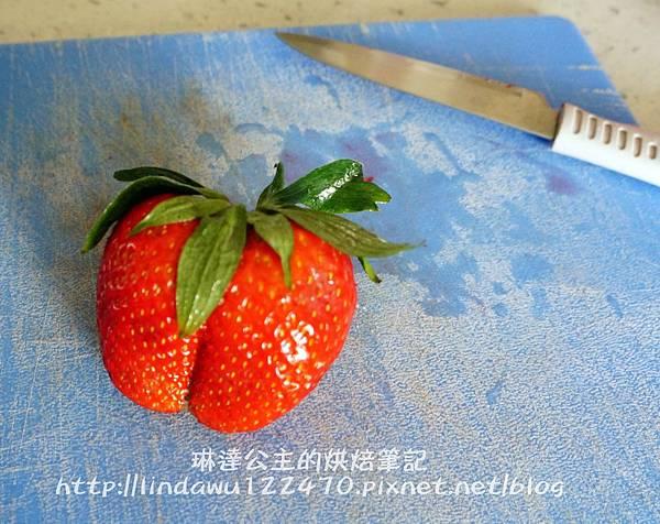 pierre草莓果醬3