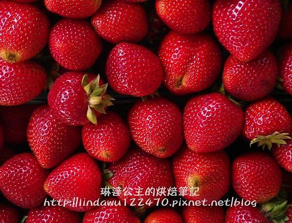 草莓果醬part ii 11