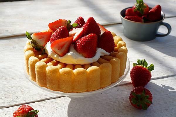 夏洛特蛋糕-1