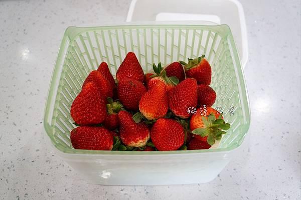 OXO蔬果保鮮盒_-4.jpg