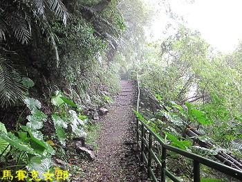 trail_06.jpg