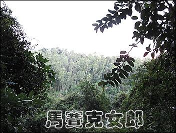 homei_03.jpg