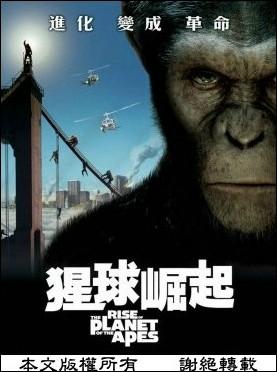 ape_01.jpg