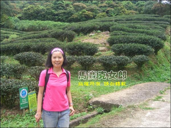 tea_11.jpg