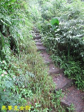 trail_02.jpg
