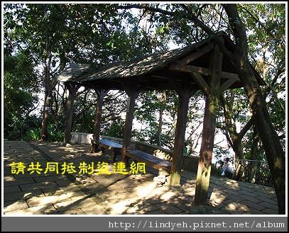elephant_19.jpg