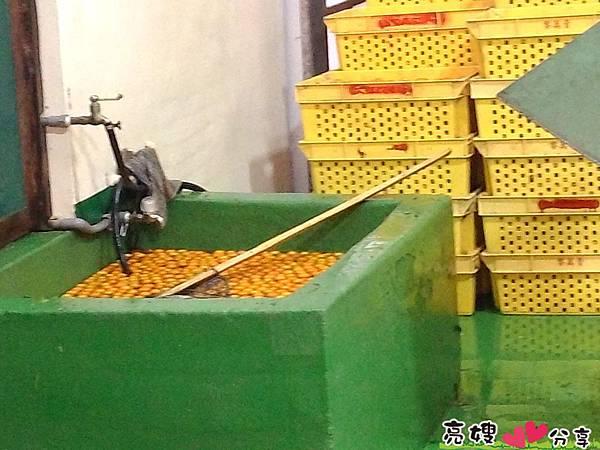 金桔農莊觀光工廠