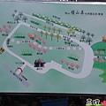 梅山橫山屏休閒園區-來梅山看金針花海