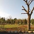 2熊大庄森林主題休閒園區,熊大庄觀光工廠,民雄新亮點,民雄新景點,民雄好玩,嘉義民雄好玩,親子休閒,觀光工廠