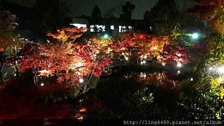 2016-11京都_171104_0017.jpg