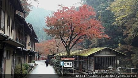 2016-11京都_171104_0024.jpg