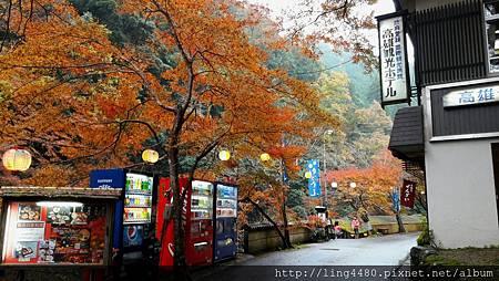 2016-11京都_171104_0025.jpg