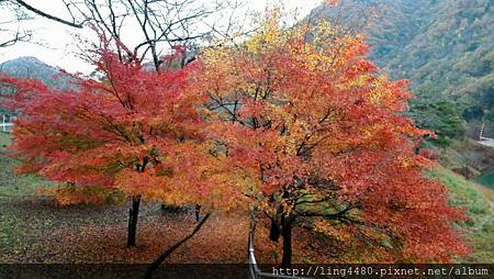2016-11京都_171104_0036.jpg