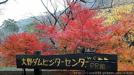 2016-11京都_171104_0037.jpg