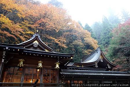 2016-11京都 (9).jpg