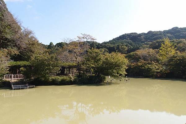 九州day-1 (23).JPG