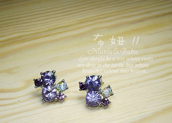 閃亮紫水鑽星光閃閃耳環 88元