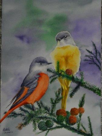一對灰喉山椒鳥 水彩畫 Arches水彩紙 58cmx38cm