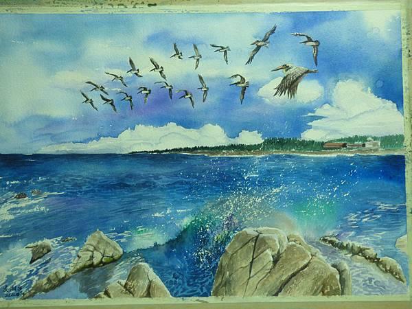 北美褐鹈鶘─水彩畫 Arches 水彩紙 56cmx38cm