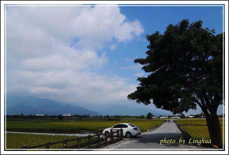 2013台東米鄉(14).JPG