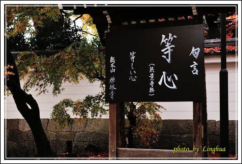 2012永觀堂夜楓(2).jpg