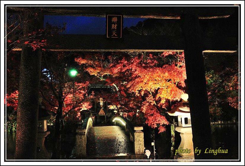 2012永觀堂夜楓(6).jpg