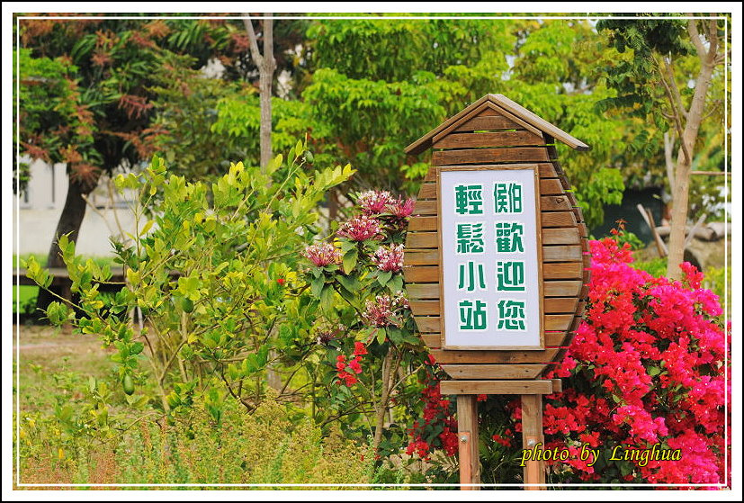 學甲.土溝.林初埤 (11).JPG