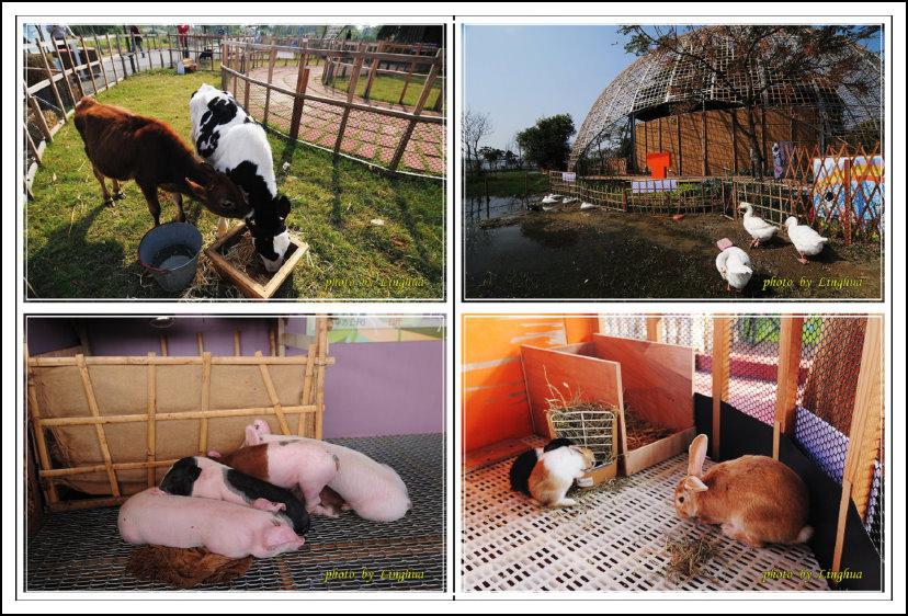 2014雲林農業博覽會(35).jpg