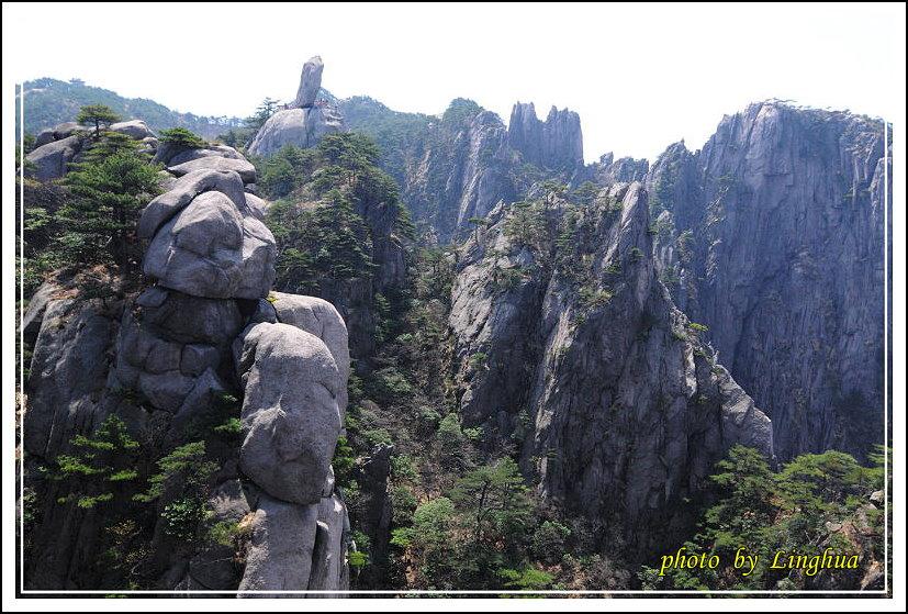 2014黃山1(40).JPG