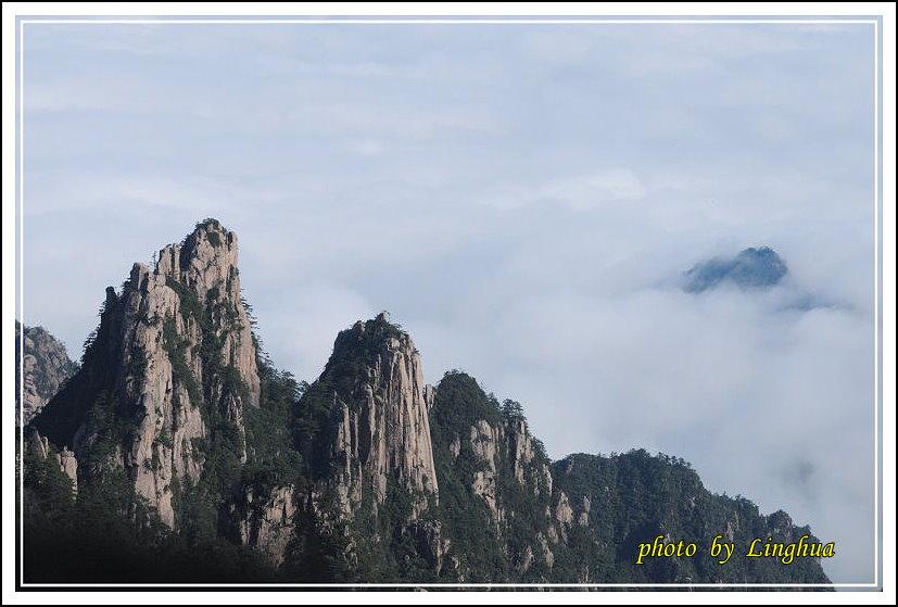 2014黃山1(8).JPG