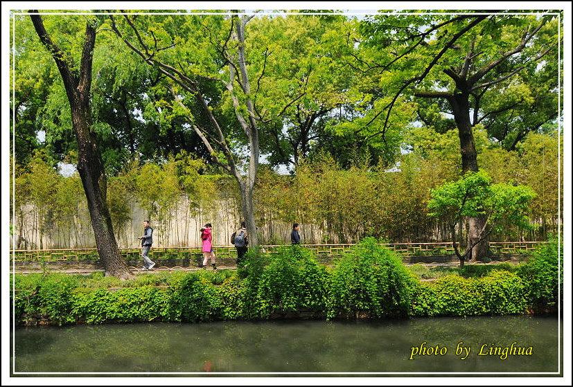 拙政園2(9).JPG