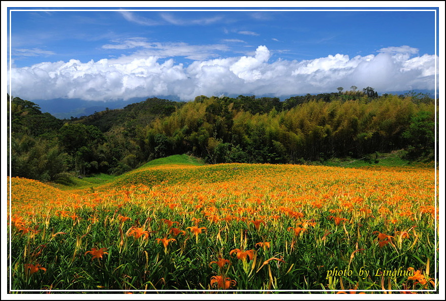 赤柯山~2(9).JPG