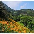 桃李河畔(6).JPG