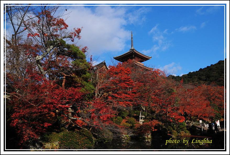 2012京都清水寺(1).JPG