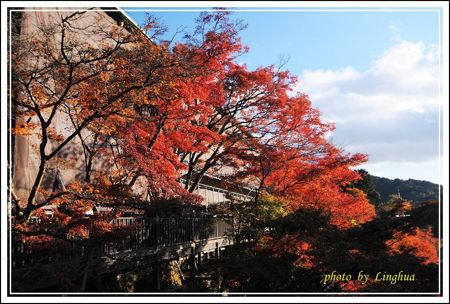 2012京都清水寺(6).JPG