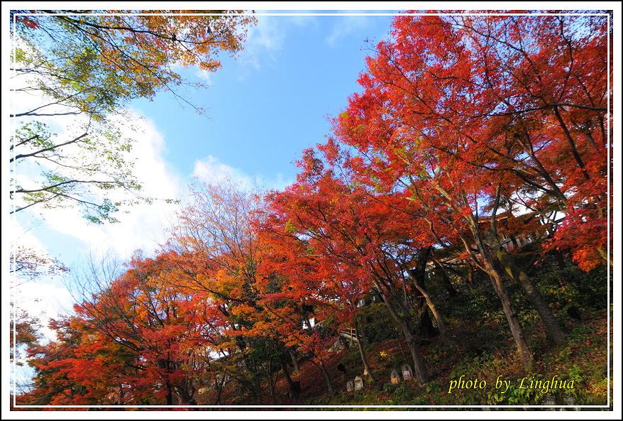 2012京都清水寺(9).JPG