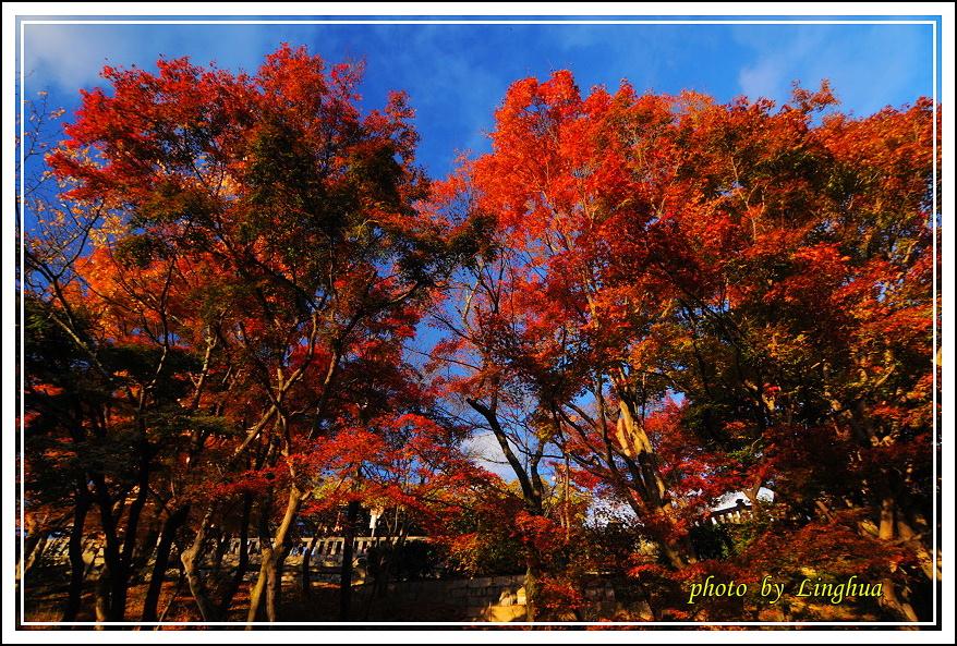 2012京都清水寺(13).JPG