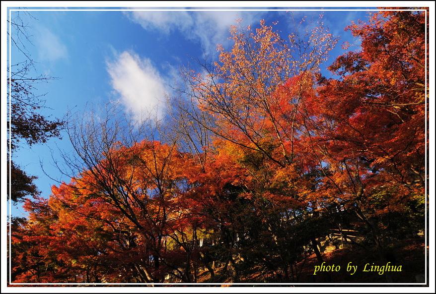 2012京都清水寺(15).JPG
