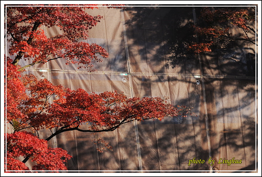 2012京都清水寺(20).JPG